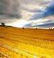 Sol og lysere tider venter. Foto: SXC.